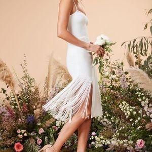 🕊NWT Dress the Population Rory Fringe Dress